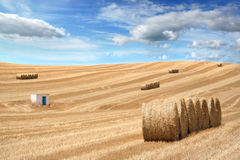 Rural field after season crop Royalty Free Stock Photos