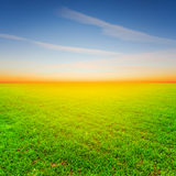 Rural field at the sunset Stock Image
