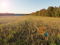Rural fields in autumn with forests in the background Sunset.  stock photo