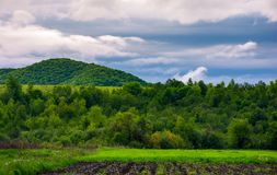 Rural fields on a cloudy day. Lovely springtime scenery of mountainous countryside stock image