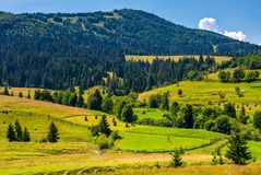 Rural fields and forested hills of Carpathians. Lovely scenery in summer mountains Royalty Free Stock Images