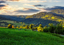 Rural fields with haystack on hill side. Green agricultural meadow on hill side in mountainous rural area Stock Photo