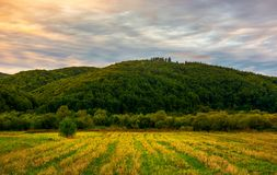 Rural fields in mountainous area at dawn. Lovely agriculture scenery under the gorgeous colorful clouds Stock Image