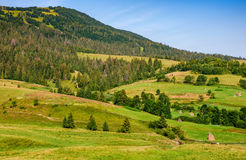 Rural fields near forest on hills of Carpathians. Agricultural fields with haystack  on hills of rural area in Carpathians. countryside mountain landscape Stock Photo