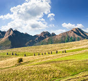 Rural fields near the high mountains Stock Images