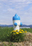 A Rural Fire Hydrant Stock Image