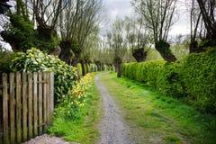 Rural Flanders, Belgium Stock Images
