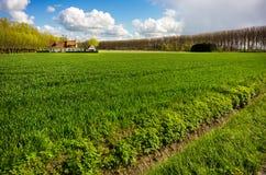 Rural Flanders, Belgium Royalty Free Stock Images
