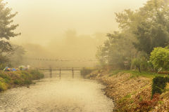 Rural fog  Bamboo bridge Royalty Free Stock Images