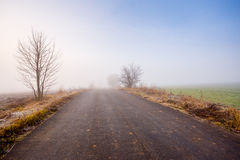 Rural foggy road going to the mist Royalty Free Stock Image