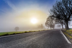 Rural foggy road going to the sunrise Stock Images