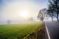 Rural foggy road going to the sunrise Royalty Free Stock Image