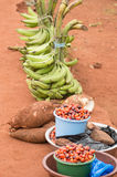 Rural food market. Palm seeds, cassava and bananas in market  of a village Stock Image