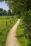 Rural footpath Royalty Free Stock Image