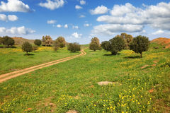 The rural footpath crosses a meadow Royalty Free Stock Photography