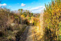 Rural, forest road, descend between garden and forest autumn, November, Slovakia.  Royalty Free Stock Photography