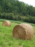Rural France. Hay stacked in a roll in a field in France Royalty Free Stock Image