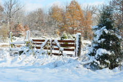 Rural frosty snow covered gate Stock Photography