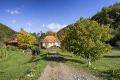 Rural garden in autumn time Stock Image