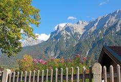 Rural garden and view to karwendel mountains Stock Photos