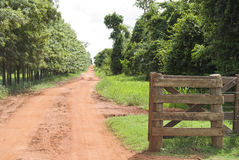 Rural Gate Stock Image