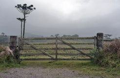 Rural Gate. Wood rural gate in a farm entrance Stock Image