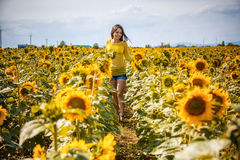 Rural girl in field sunflowers Royalty Free Stock Photography