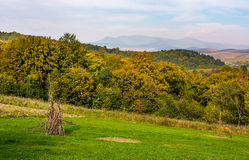 Rural grassy fields on Carpathian hills Royalty Free Stock Photo