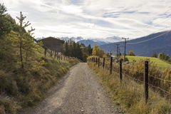 Rural gravel road through the Austrian alps. In the Tirol leading between farm fences towards snow covered alpine peaks in the background Stock Images