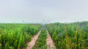 Rural gravel road at foggy morning. Countryside gravel road at cold, foggy morning Royalty Free Stock Image