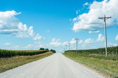 Empty country road in corn country royalty free stock photo