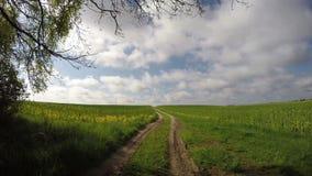 Rural gravel road in spring. Farmland landscape, timelapse 4K stock video
