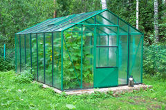 Rural greenhouse Royalty Free Stock Photo