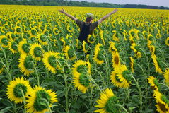 Rural guy in sunflower. Rural guy in Ukraine on field Royalty Free Stock Images