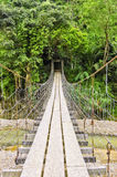 Rural Hanging Bridge Stock Image