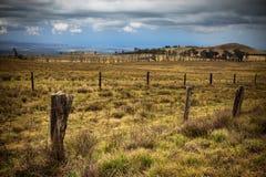 Rural Hawaiian Landscape. Rustic landscape on the Big Island of Hawaii royalty free stock photography