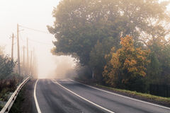 Rural highway in autumn foggy morning. Empty rural highway in autumn foggy morning, stylized photo with warm tonal correction effect, old instagram style filter stock photo
