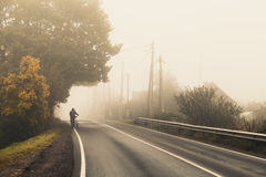 Rural highway in autumn foggy morning. Empty rural highway in autumn foggy morning, warm vintage tonal correction effect, old style photo filter stock photos
