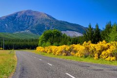 Rural Highway New Zealand. Beautiful Rural highway in New Zealand Royalty Free Stock Images