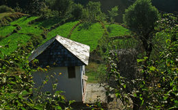 Rural Himachal n organic farming and cottage architecture hut in remote Himalayan region Stock Photos