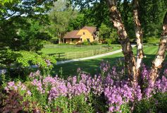 Rural Home and Flowers Stock Photos