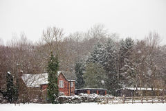 Rural home among woodland in a snowstorm Royalty Free Stock Images