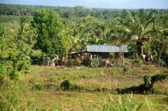 Rural Honduran Home Royalty Free Stock Image