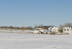 Rural horse farm in winter Royalty Free Stock Photos