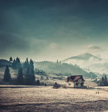 Rural house in the Carpathian mountains Royalty Free Stock Image