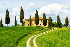 Rural house and cypress avenue Royalty Free Stock Photography