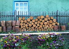 Rural house with firewood and pansies Stock Images