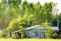 Rural house in front of the woods. The poor family's rural house is in front of the tall woods royalty free stock photography