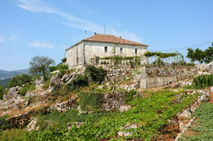 Rural House On The Hill, Montenegro Royalty Free Stock Image