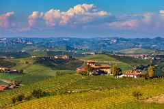 Rural house on the hill among vineyards. royalty free stock photos